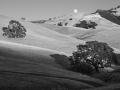 Mt Diablo Oaks and Rising Full Moon