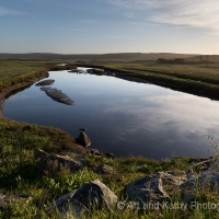 Point Reyes Slough
