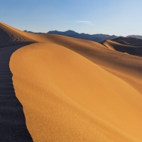 Mesquite Dunes, Morning Sun