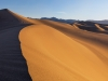 Mesquite Dunes, Morning Sun