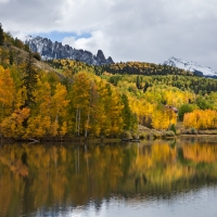 Aspens and Pond