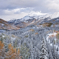 Snow and Fall Colors, Colorado